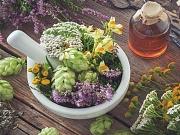 12 biljaka u borbi protiv virusa